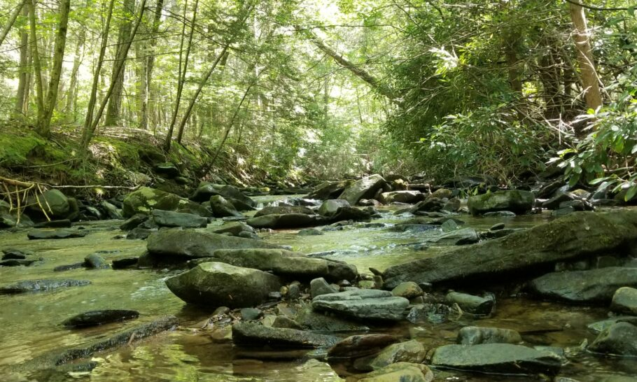 Stroud Water Research Center Resources: Model My Watershed