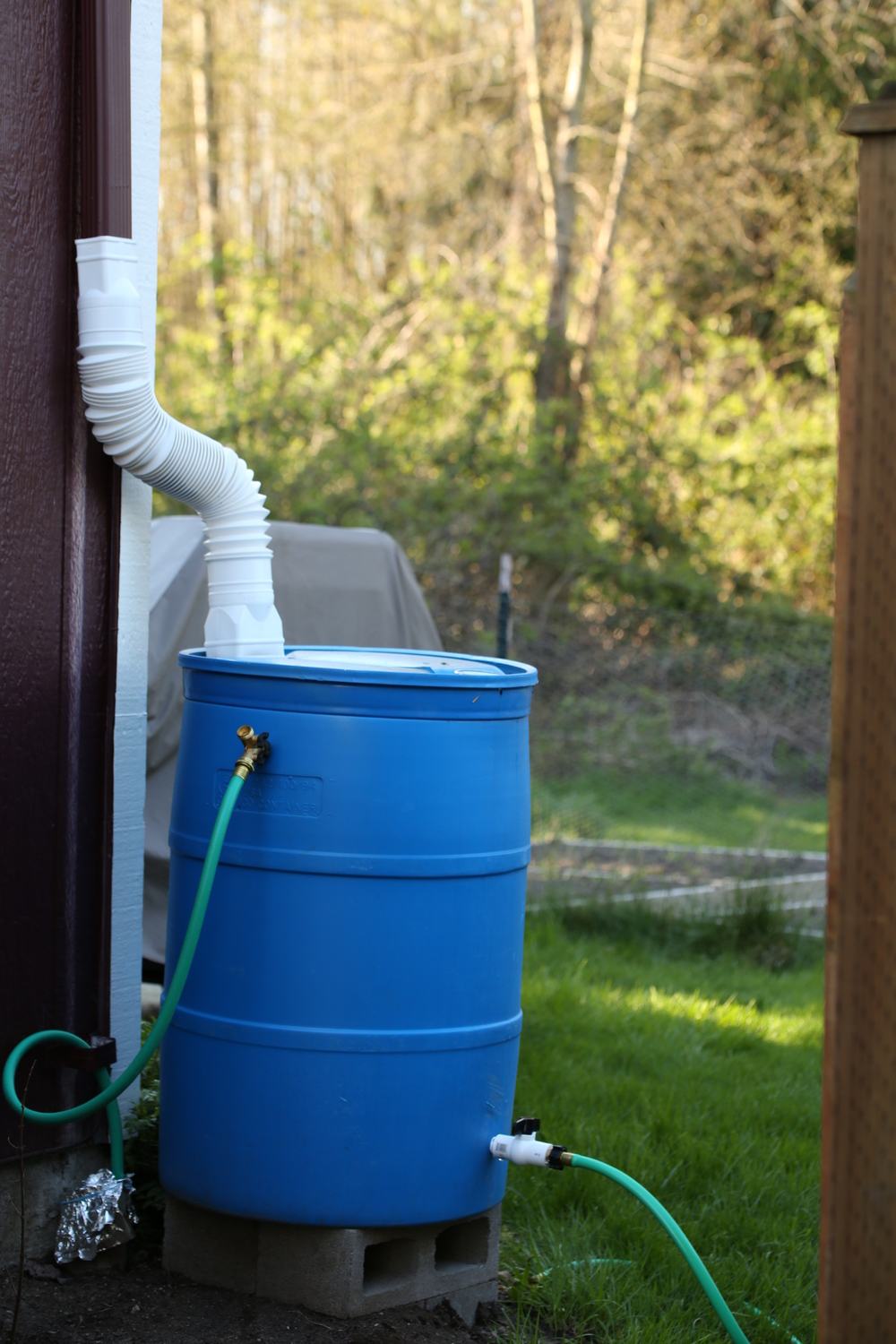 A rain barrel set up under a home's rain gutter