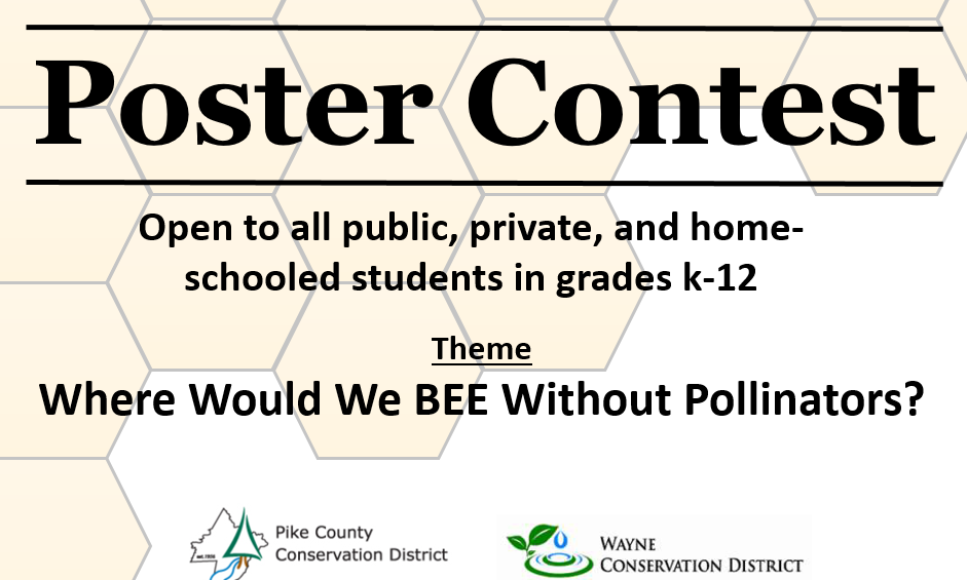 Poster Contest and At-Home Conservation Activities