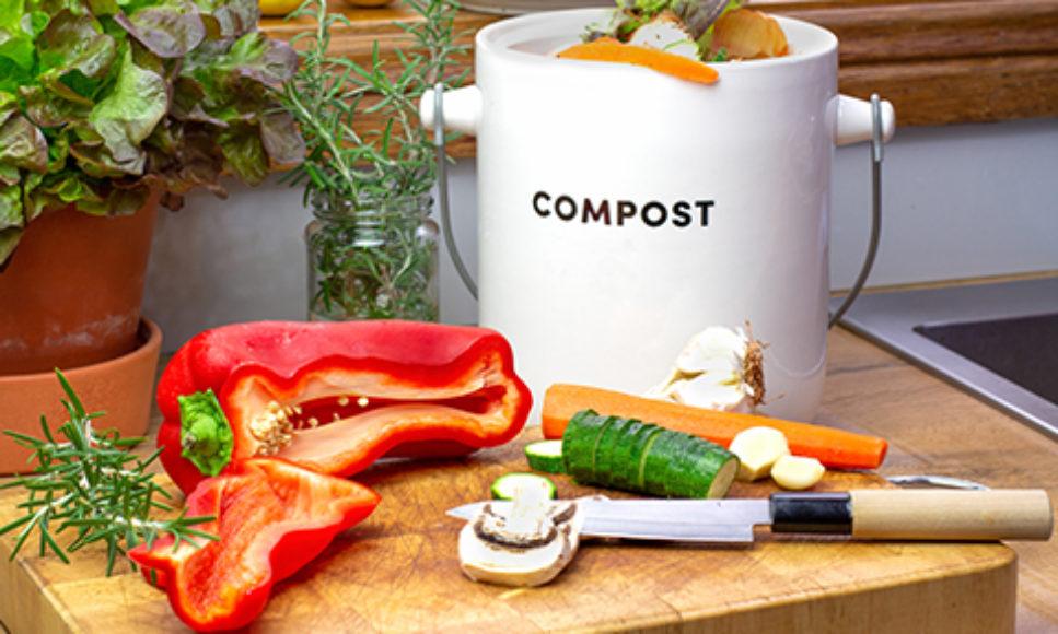 Kitchen Compost Creates Healthy Soil