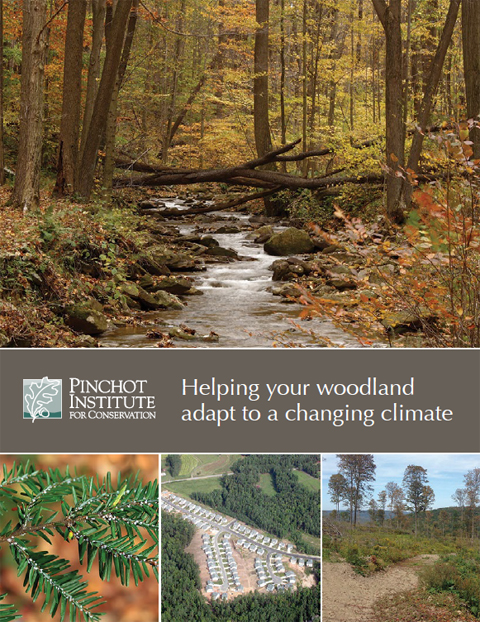 The cover of a report titled Helping Your Woodland Adapt to a Changing Climate by the Pinchot Institute for Conservation.