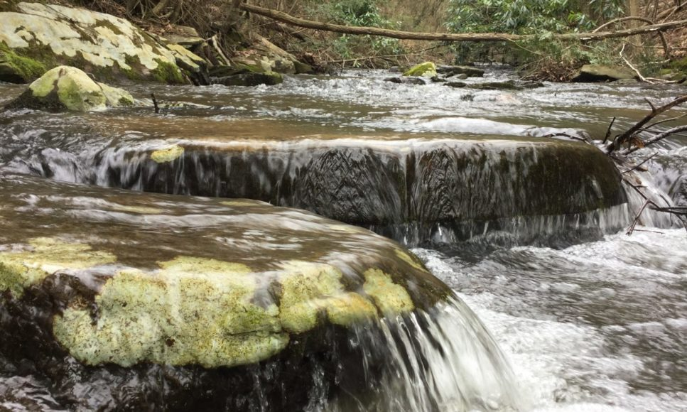 Report on Environmental Quality of Pike County Streams: 2019