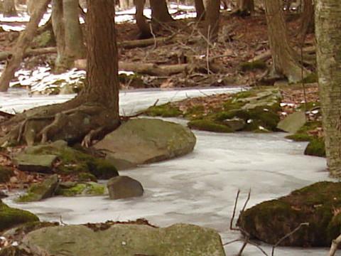 Ice Stream Photo