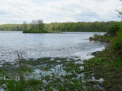 Photo of a Pike County PA lake.