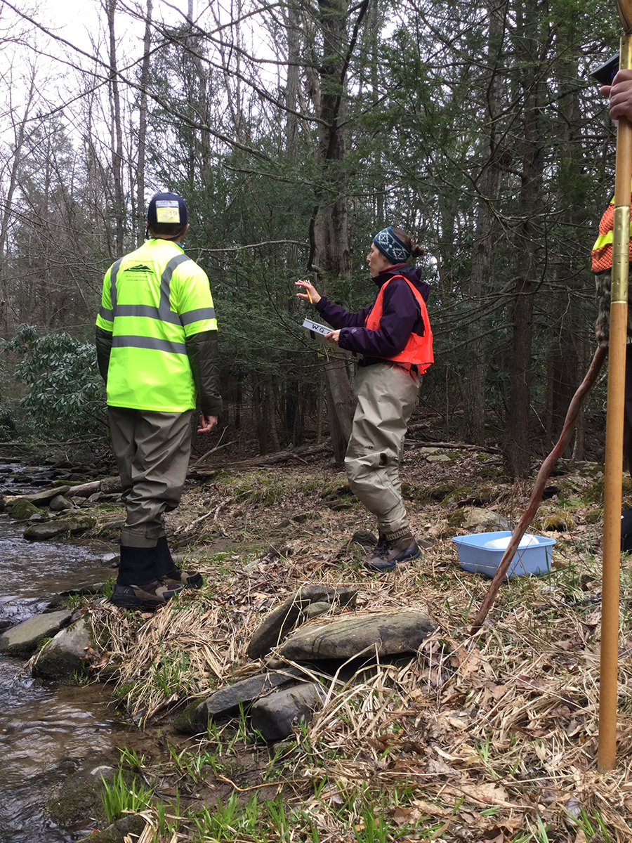 Photo of Pike County Conservation District staff assessing a riparian buffer on Kleinhans Creek.
