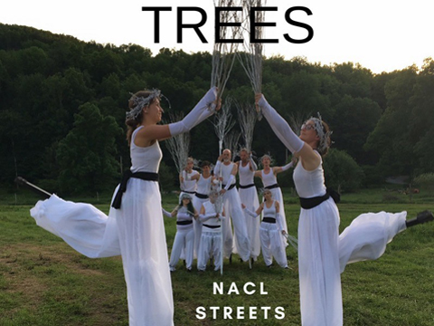 A photo of TREES by NACL Streets