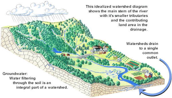 What is a watershed? This watershed illustration cam help answer teh question.