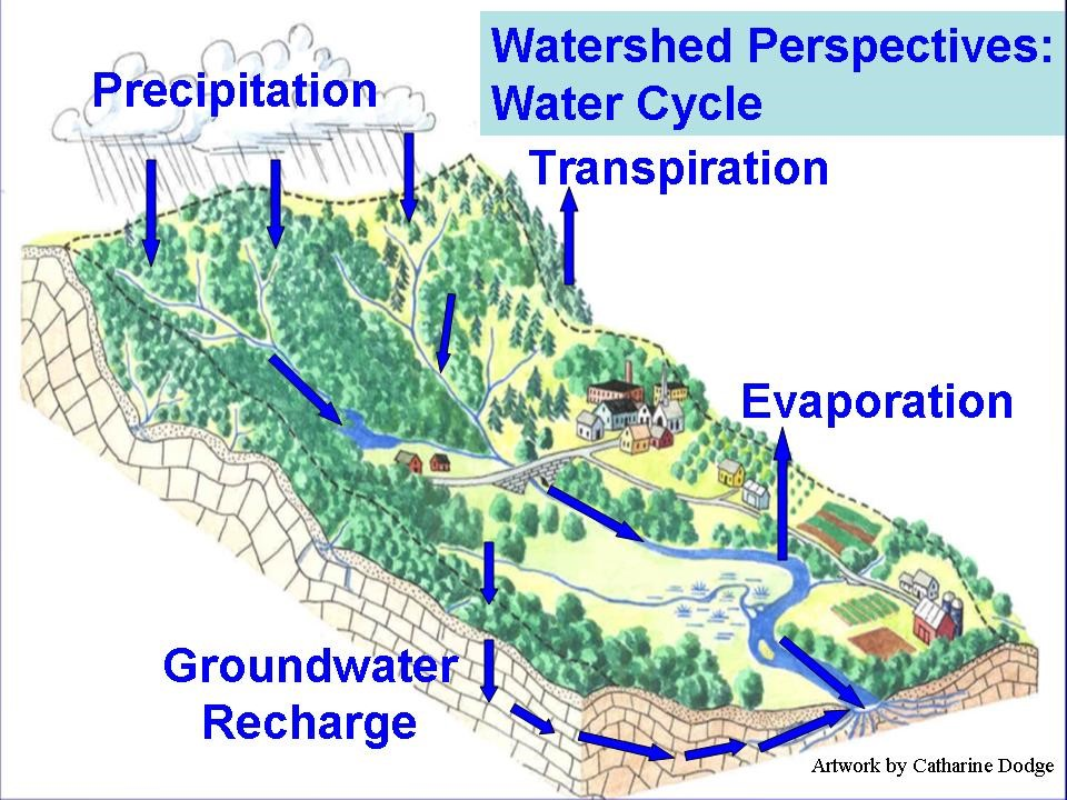 A diagram of a watershed