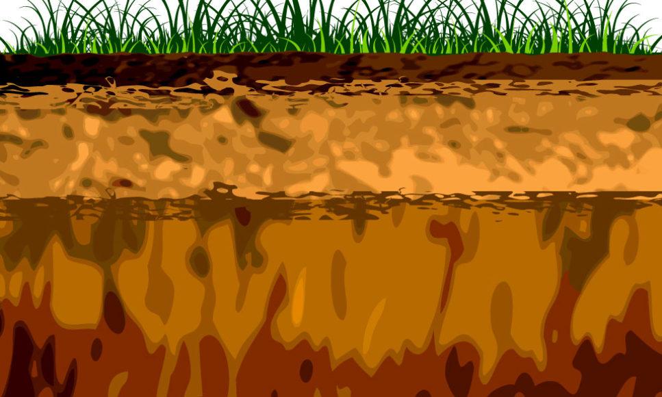 Soil Types
