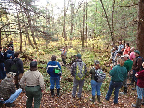 woodland seminar